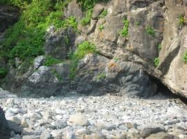 茂師漁港周辺で見られる原地山層と宮古層群の不整合露頭