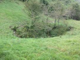 江川地区で見られる石灰岩地の窪地(ドリーネ)