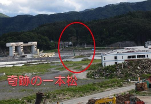 陸前高田の『奇跡の一本松』と道の駅