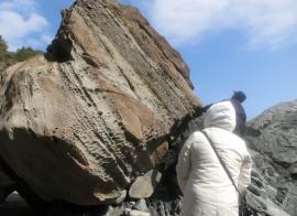 ハイペ津波石