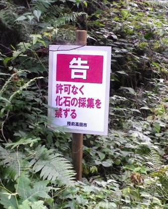 矢作町のペルム紀化石産地
