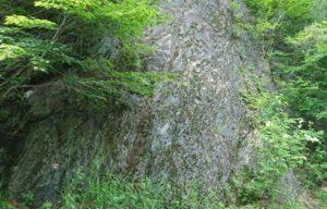 豊間根川のチャート砕屑岩