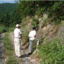雪沢の石炭紀化石産地