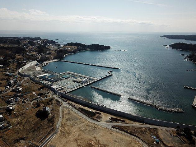 門之浜の防潮堤